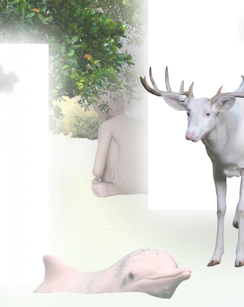fulop gergo fülöp gergő artist contemporary art collage digital hungary budapest