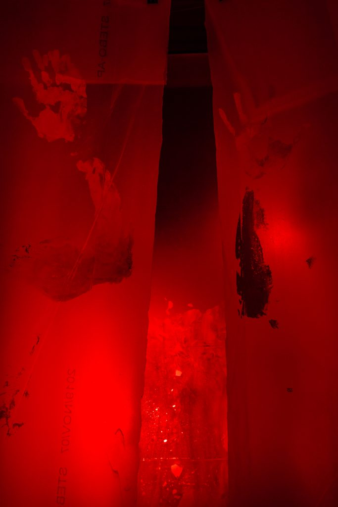 davide di votti when my body is alien kavics exhibition installation curated gergo fulop contemporary art artist pride independent budapest underground hungary